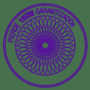Circle-Stamp-ES